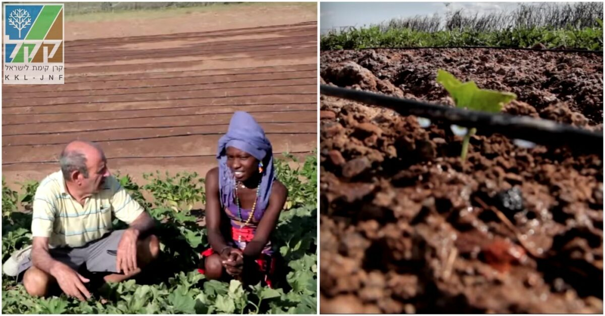 JNF and the Arava Agricultural Training Center in the Turkana region of Kenya, providing water and agricultural expertise and training. Source: JNF YouTube screenshots.