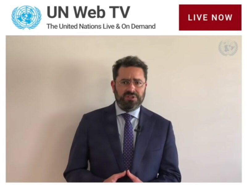 UN Watch executive director Hillel Neuer speaks at UNHRC 30th Special Session, screenshot.